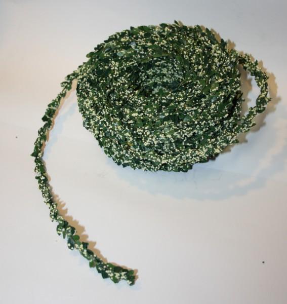 Miniranke grün creme Buchs