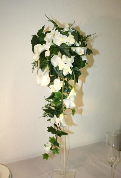 Callas wilde Blüten