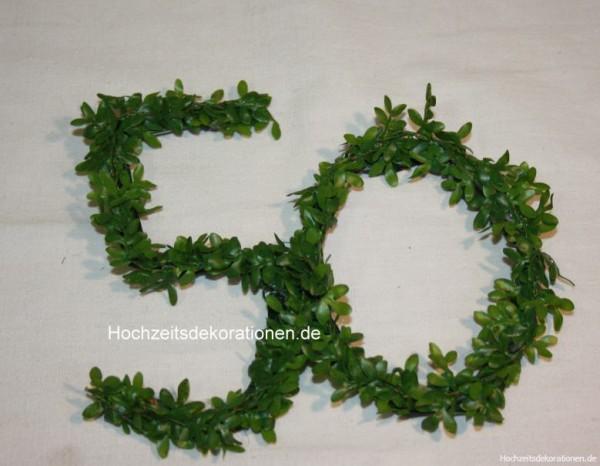 50 minideko buchs